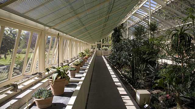 Visit the National Botanical Gardens