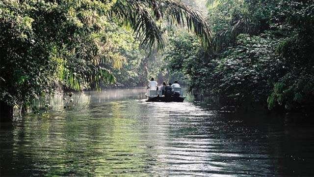 tortuguero canals (1)