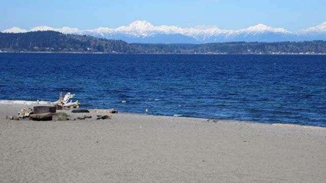 alki beach seattle (1)