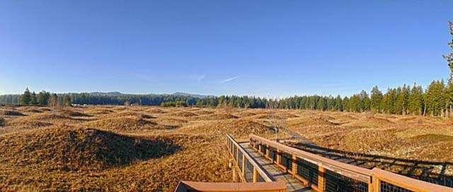 mima mounds natural area preserve olympia washington (1)