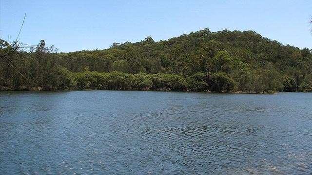 Garigal_National_Park