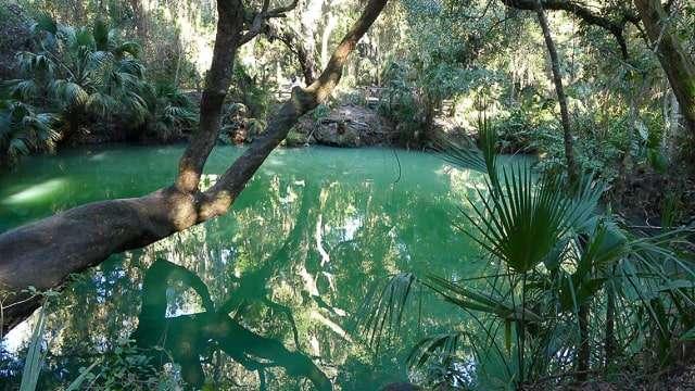 Green Spring, Florida