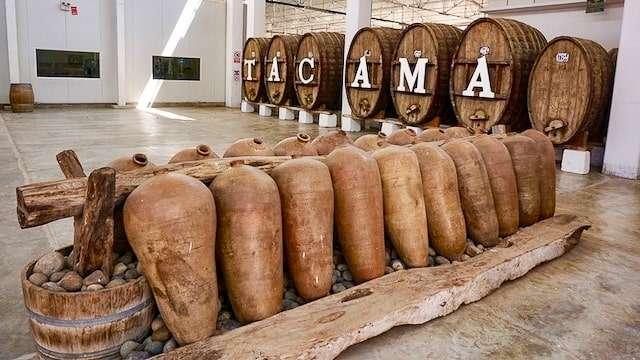 Pisqueras for fermenting pisco in Peru