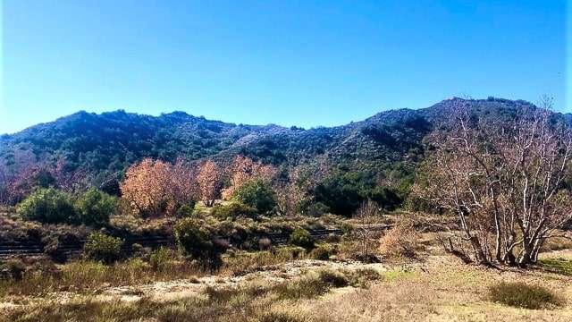Ronald W Caspers Wilderness Park, near San Juan Capistrano, CA