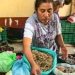 Seller at Tlacolula Market