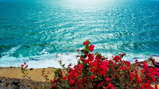 Sea of Cortez - Puerto Peñasco Promenade