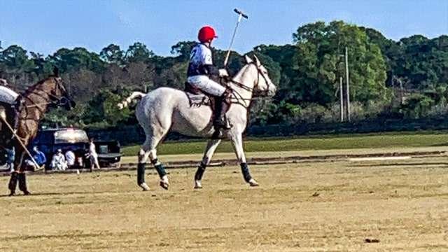 Polo in Hobe Sound, FL