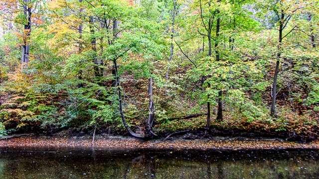 Keuka Hiking Trail, Finger Lakes NY