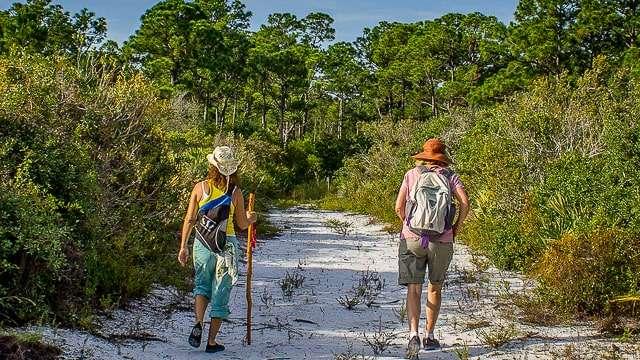 Take a Scenic Hike