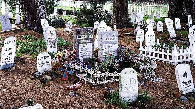 Presidio San Francisco Pet Cemetery