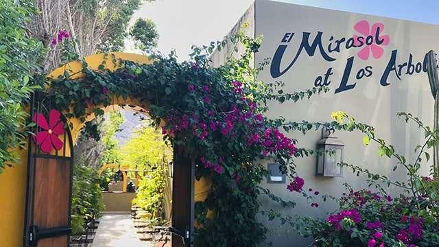 El Mirasol Mexican Cucina