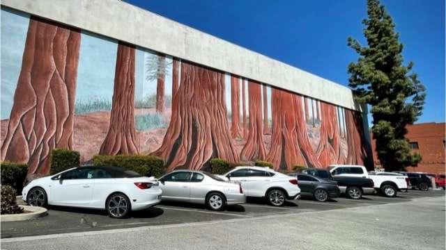Giant Sequoia Mural - Visalia, CA