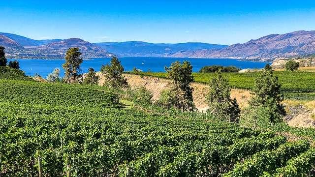 View of Okanagan Lake from KVT