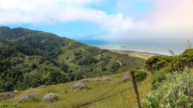 Mattole Road to the Lost Coast