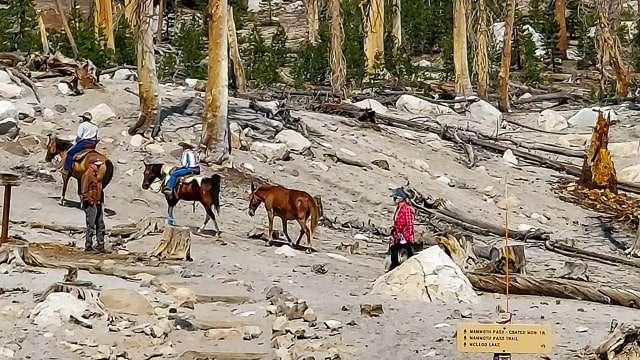 Mammoth Lakes Horseback Trail