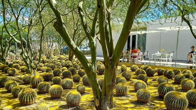 Sunnylands - Rancho Mirage
