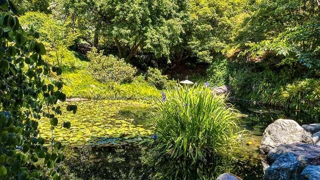 Botanical Gardens - UCSF